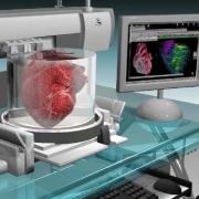 Трехмерная печать в медицине